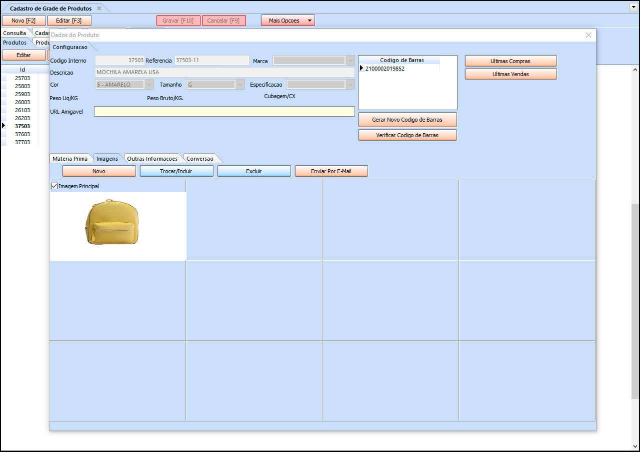 Como cadastrar grade de produtos especifica para Loja Virtual – FAQ89 009